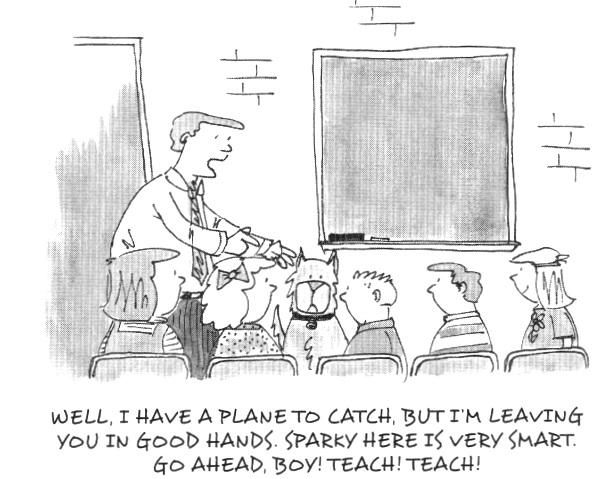 So, You're a Primary Teacher!,   p. 72