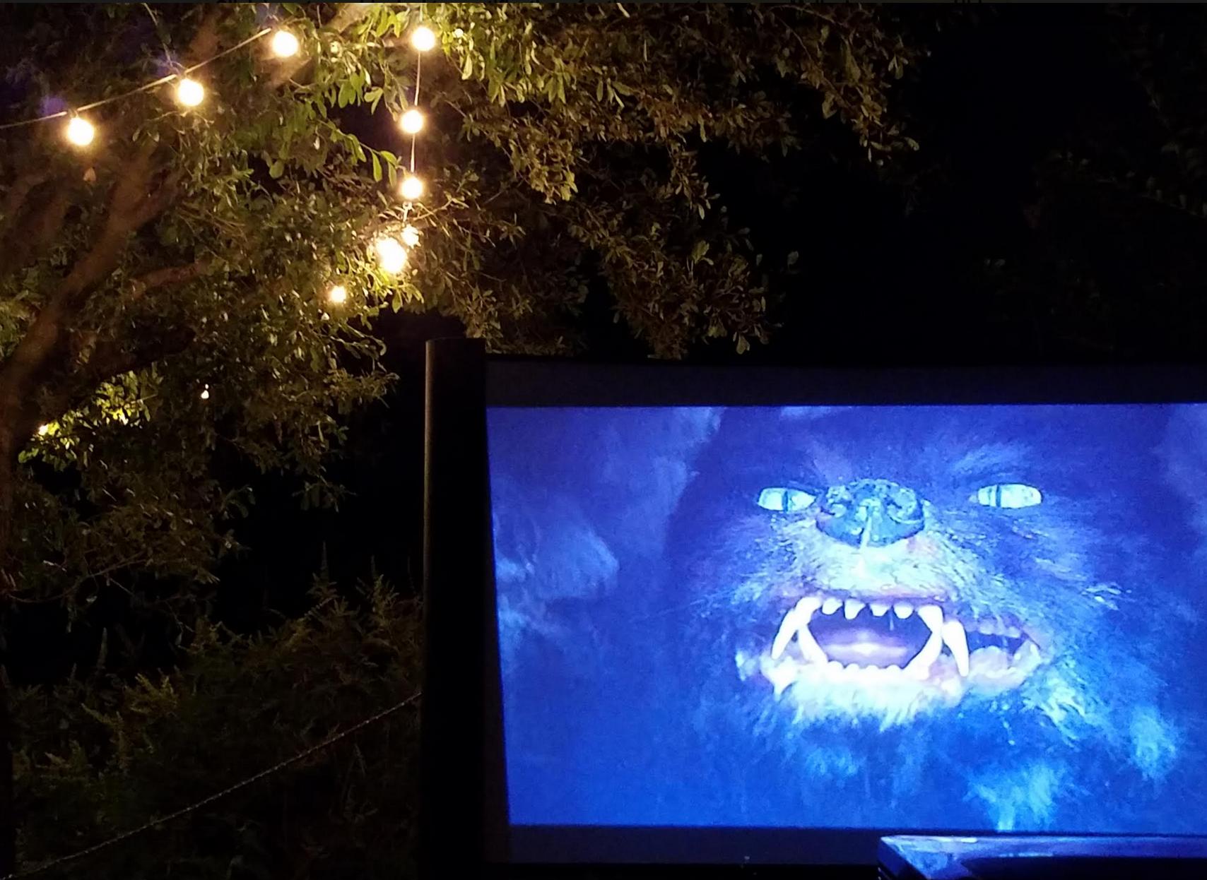 Texas Austin San Antonio backyard neighbor movie nights