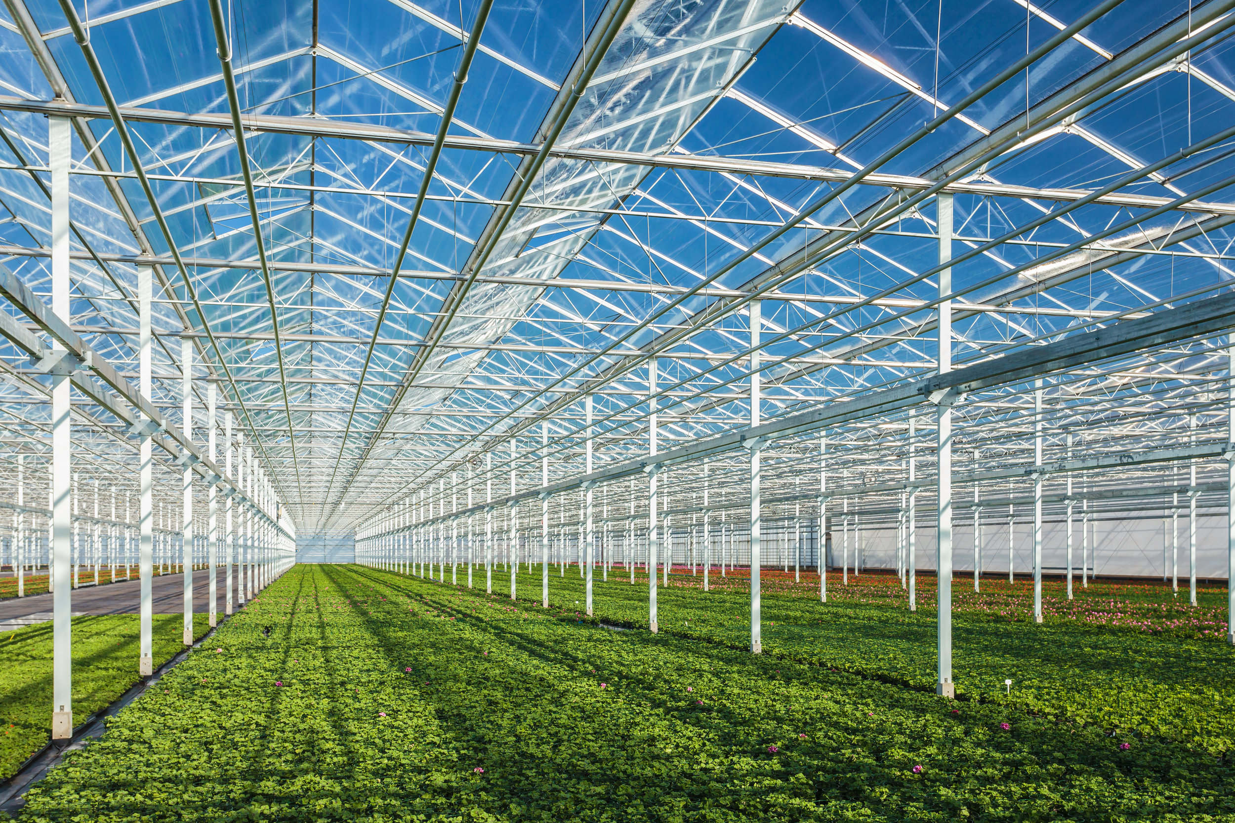 GREENHOUSES - We partner with manufacturers to design and install top-quality greenhouses from the ground up. Our scalable,versatile designs can be tailored to fit virtually any sizing functionality you need. These commercial strength structures are efficient, reliable, and professional so you can get the highest production out of your growing environment.