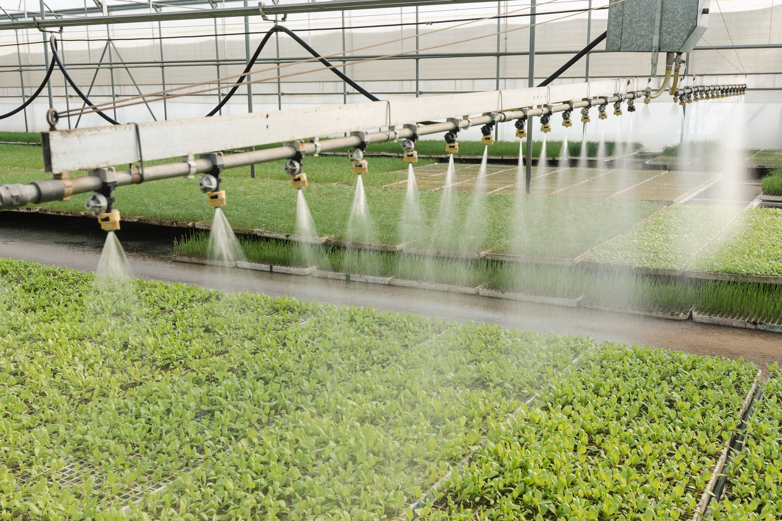 FERTIGATION & IRRIGATION - We are authorized, expert installers of fertigation and irrigation systems. Our automated nutrient injection systems handle both the measurement and mixture of nutrients, as well as the delivery of those components to the organism. This automation is essential to any large-scale cultivation in order to maintain crop consistency.