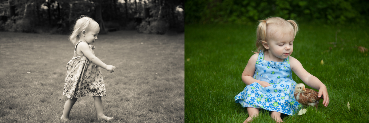 Kids-Chicks-composite-3.jpg