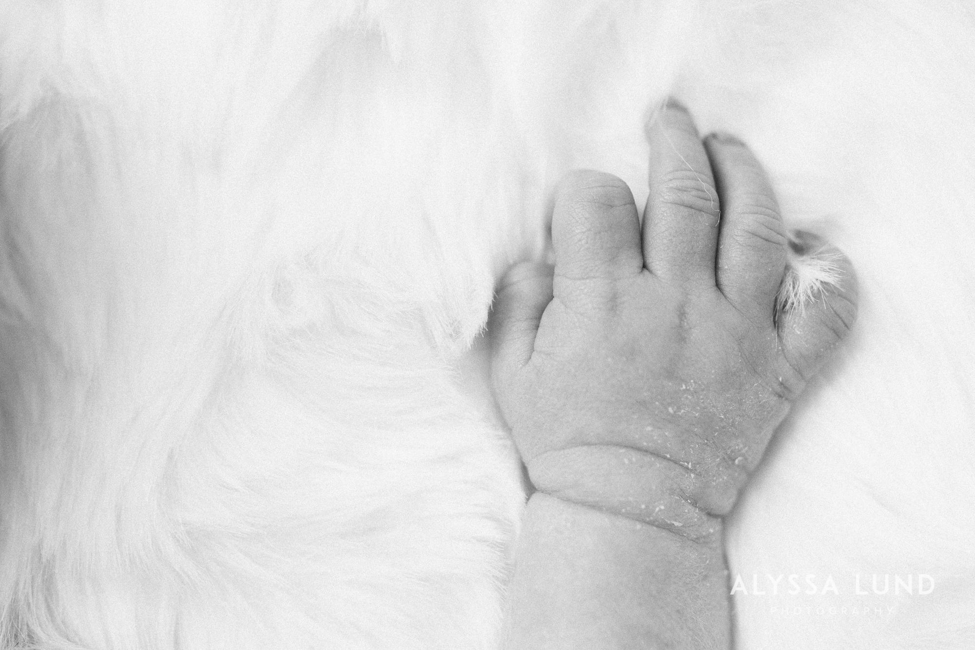 Minneapolis-lifestyle-newborn-portraits-01.jpg