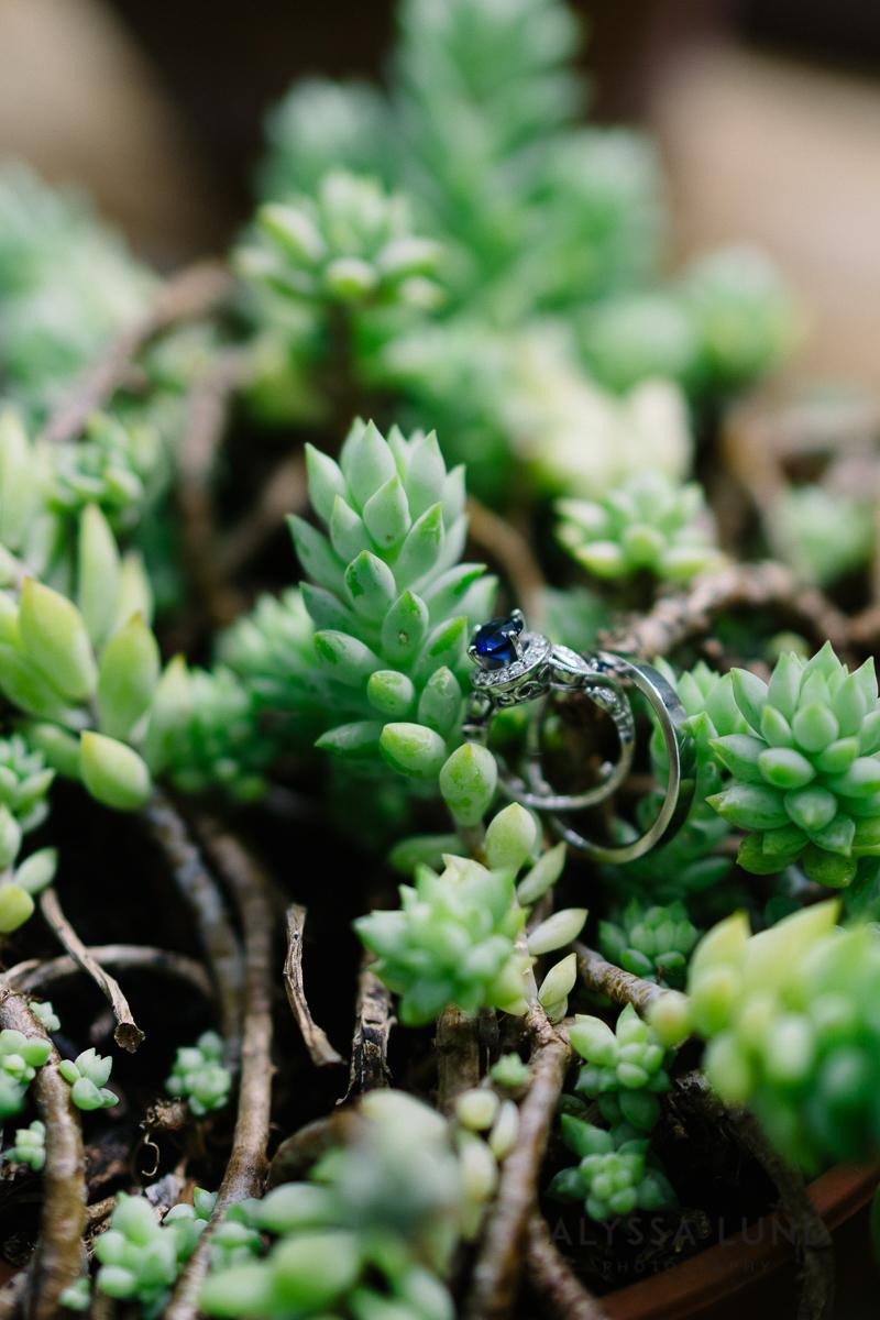 Minnesota Arboretum Wedding Photography by Alyssa Lund Photography-04.jpg