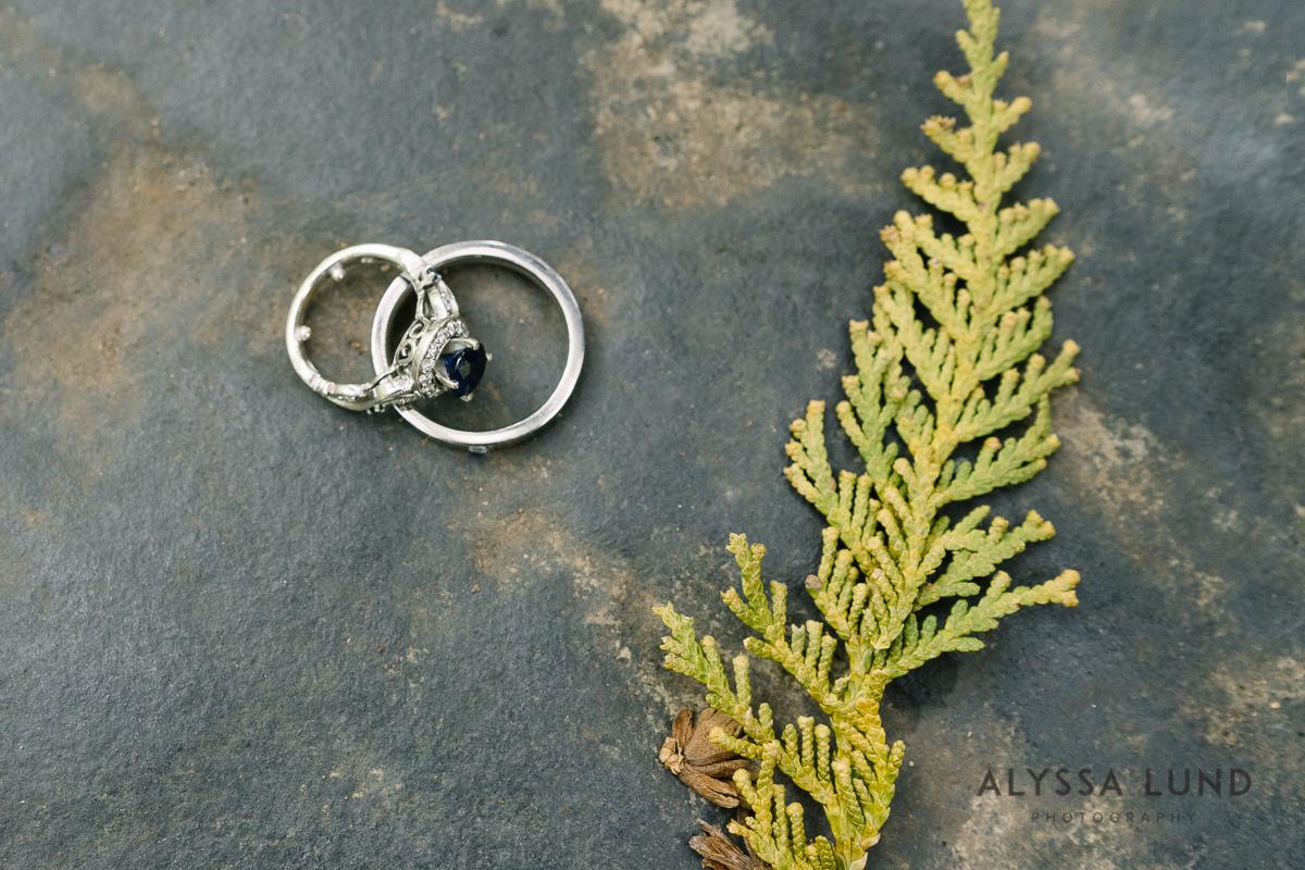 Minnesota Arboretum Wedding Photography by Alyssa Lund Photography-05.jpg