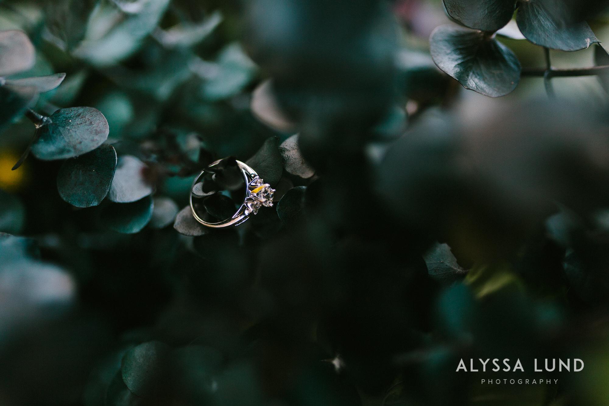 Wayzata Engagement Photography-03.jpg
