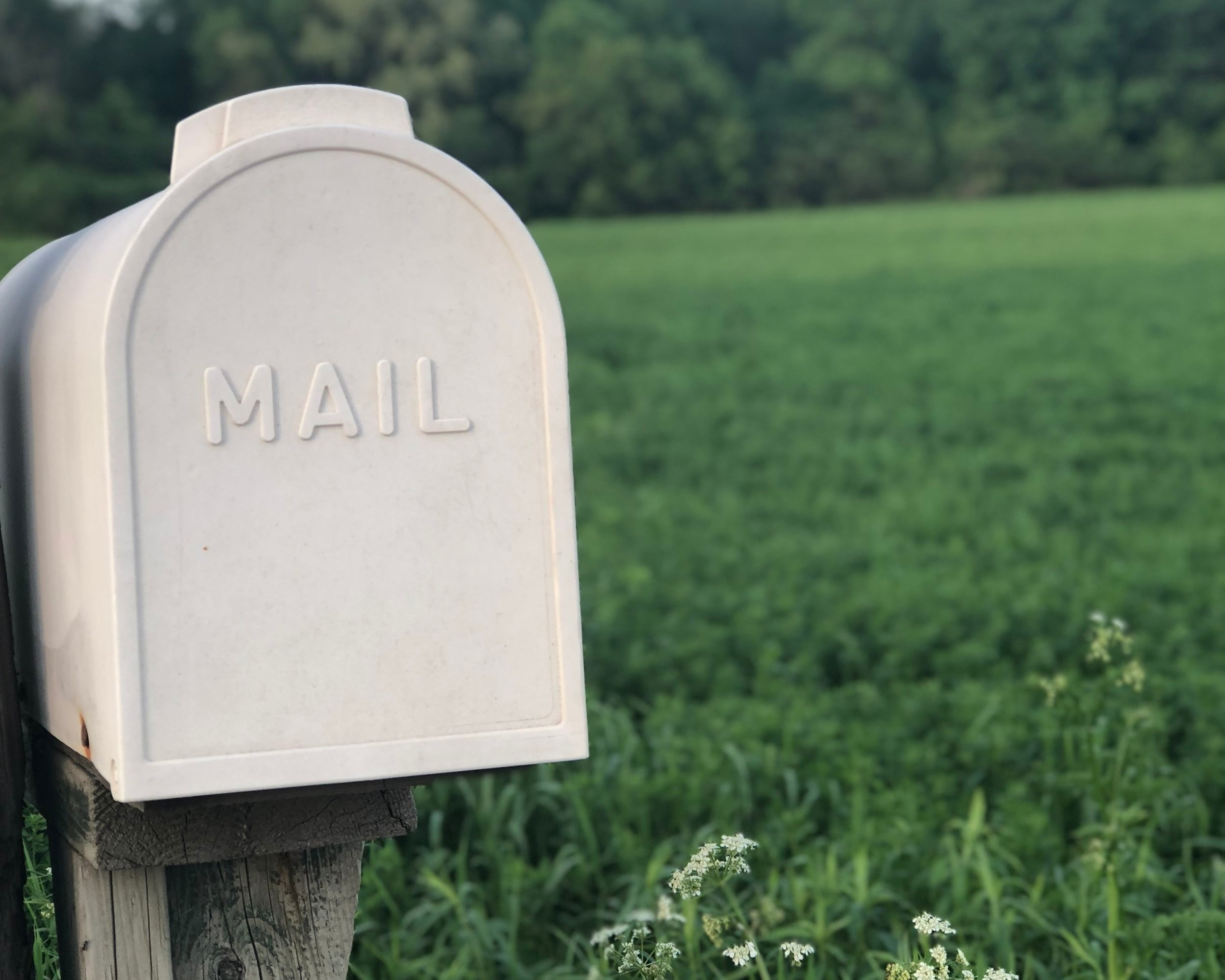 emails - How to stay organized and stay on top of it all.