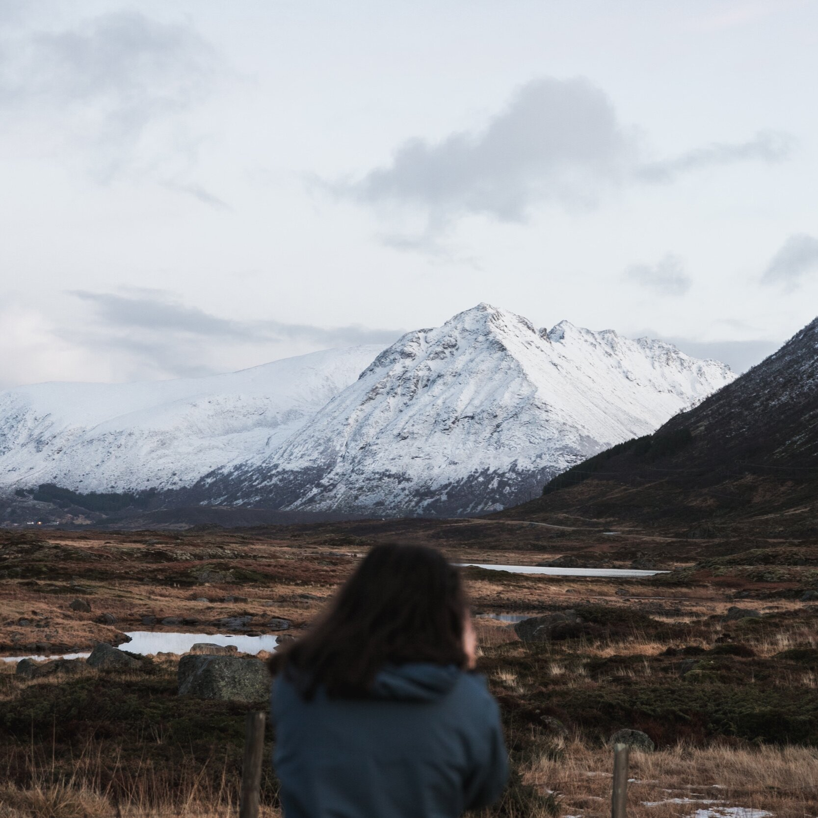 Lofoten winter 2019