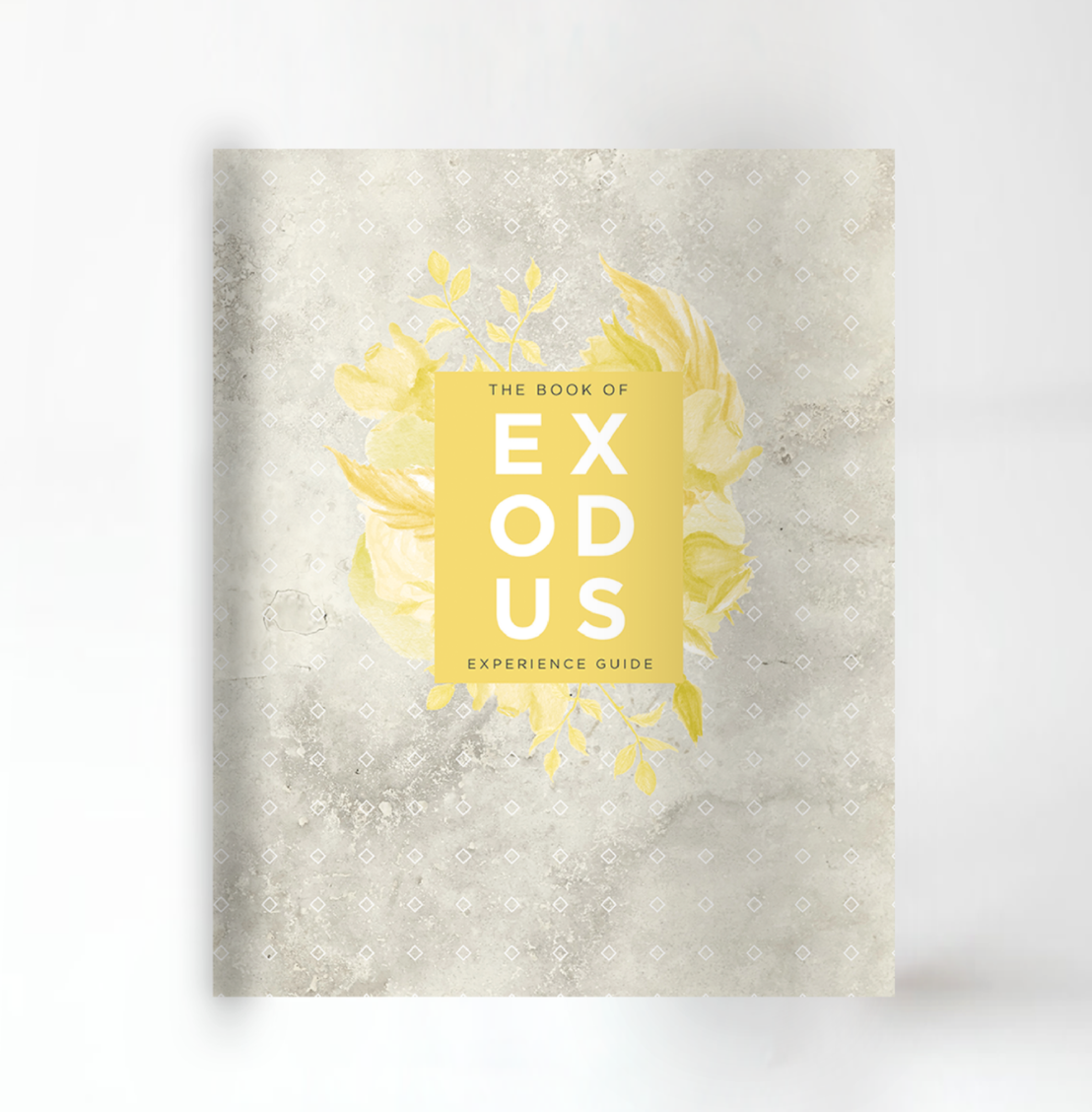 "First 5 - ""Exodus"" Experience Guide Cover"