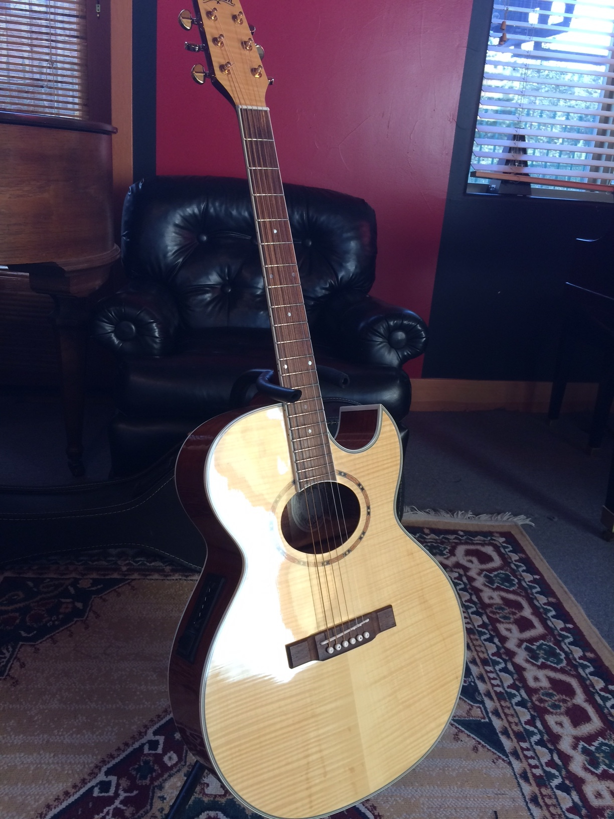 Washburn AcousticElectric guitar with coffin case.JPG