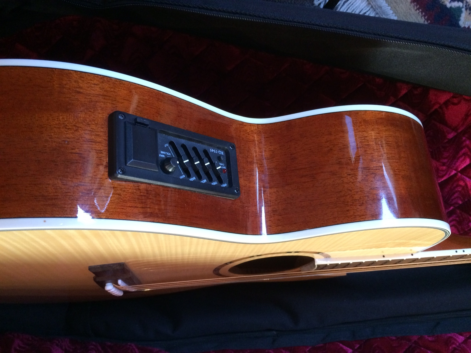 Washburn AcousticElectric guitar with coffin case 2.JPG