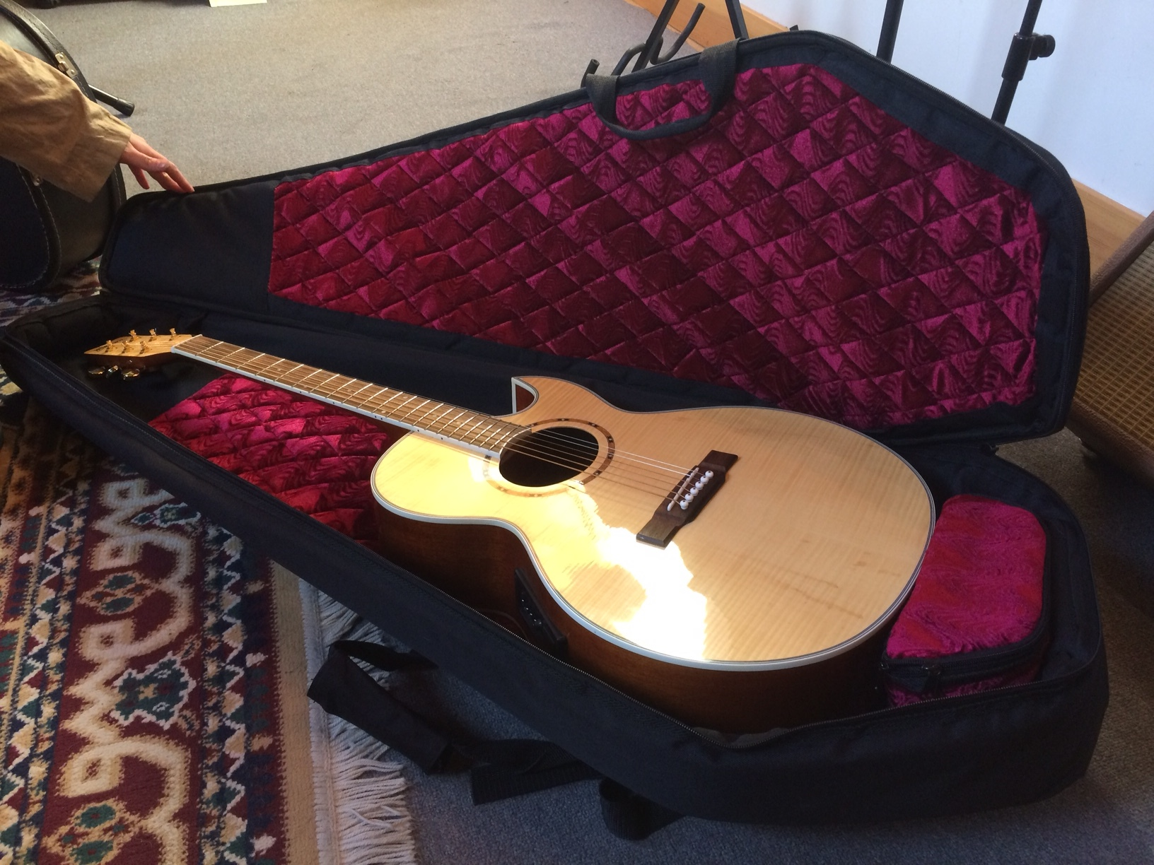 Washburn AcousticElectric guitar with coffin case 3.JPG