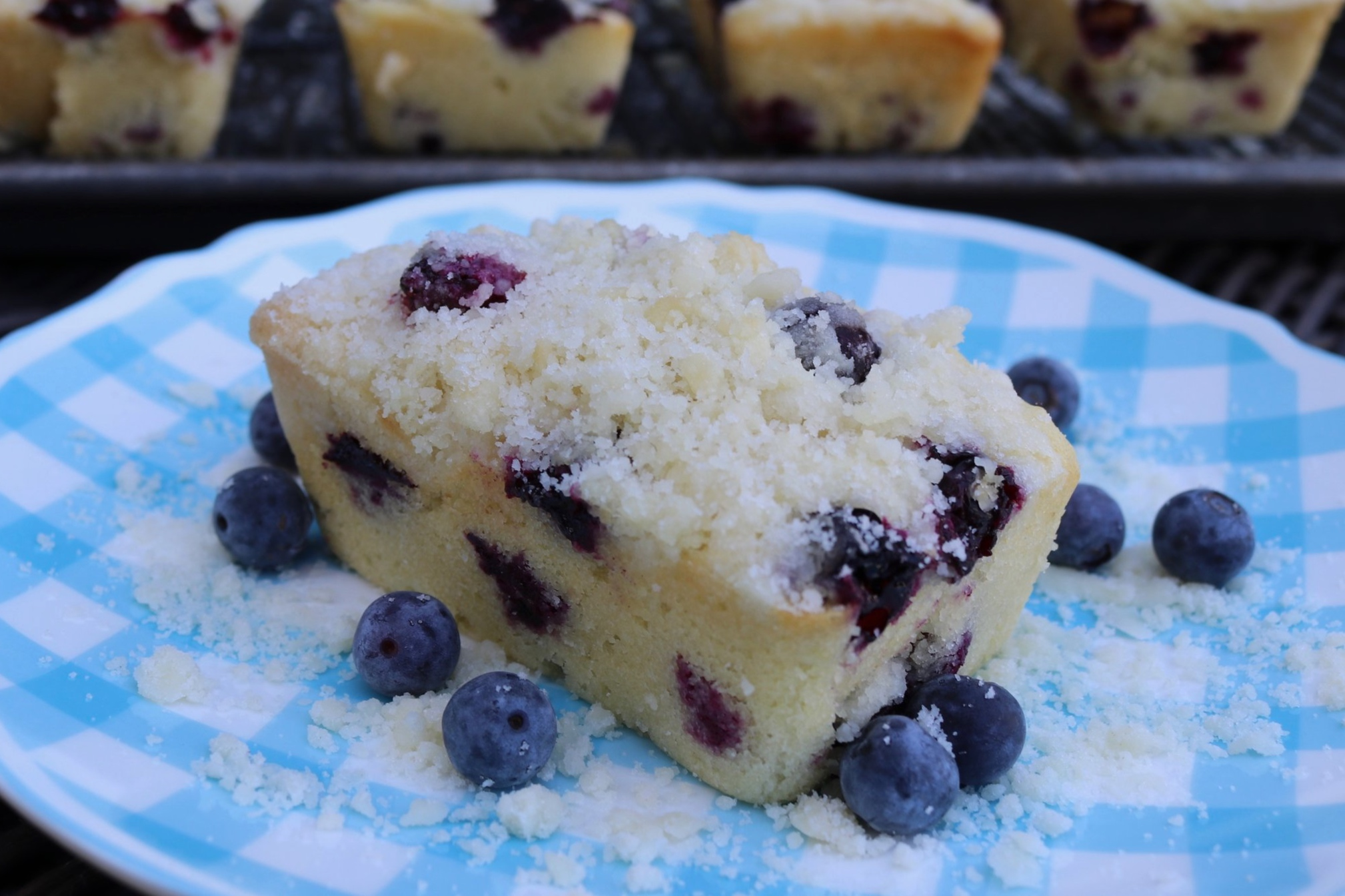 Blueberry Mini-Loaves