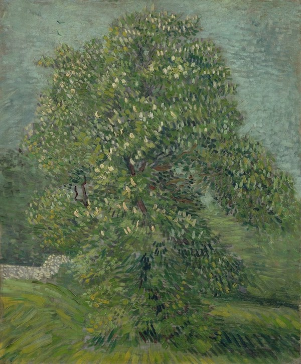 Vincent Van Gogh:  Chestnut Tree in Blossom     1887 oil on canvas (Image:  Van Gogh Museum )