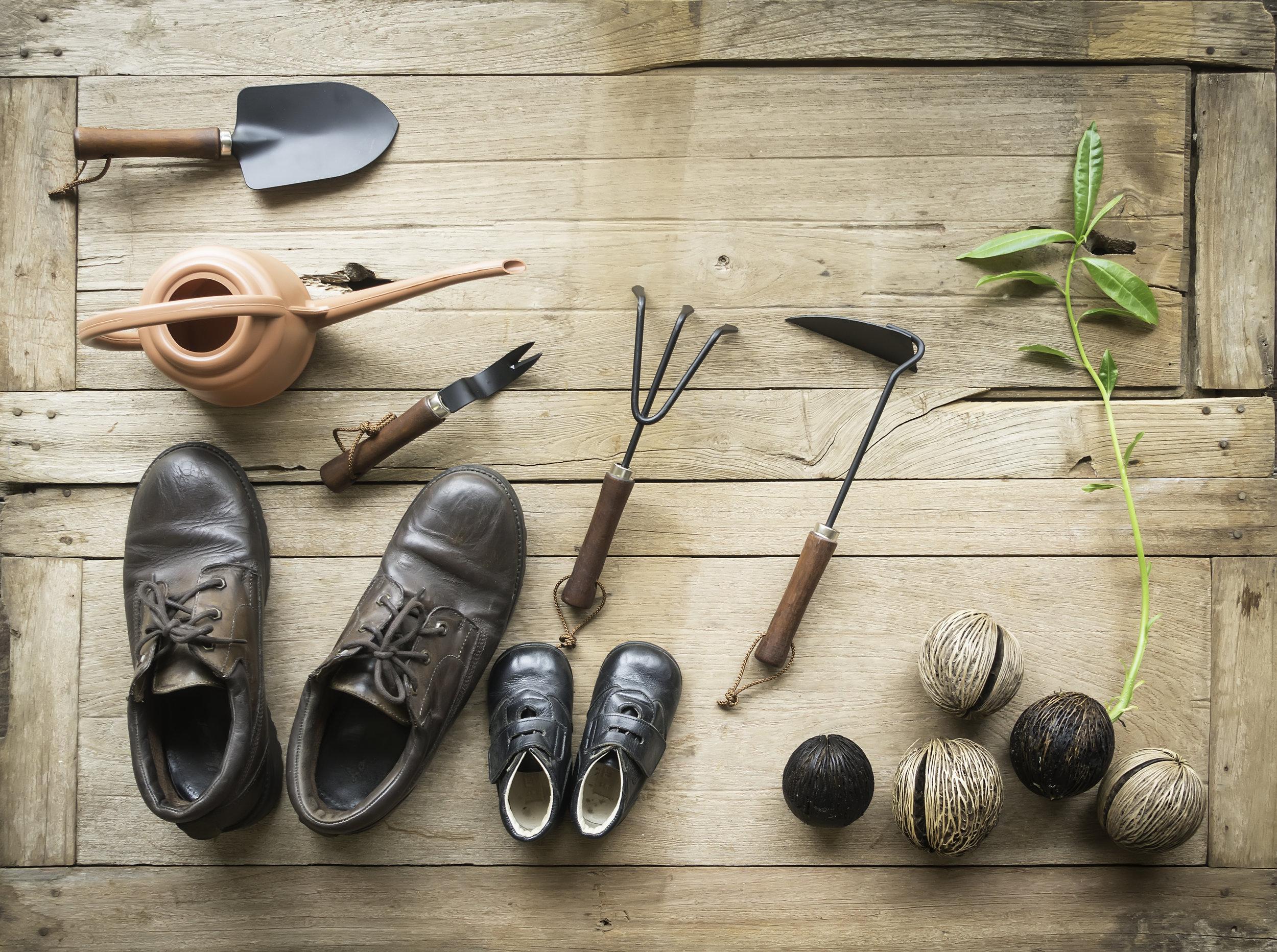 Create your own shoe garden