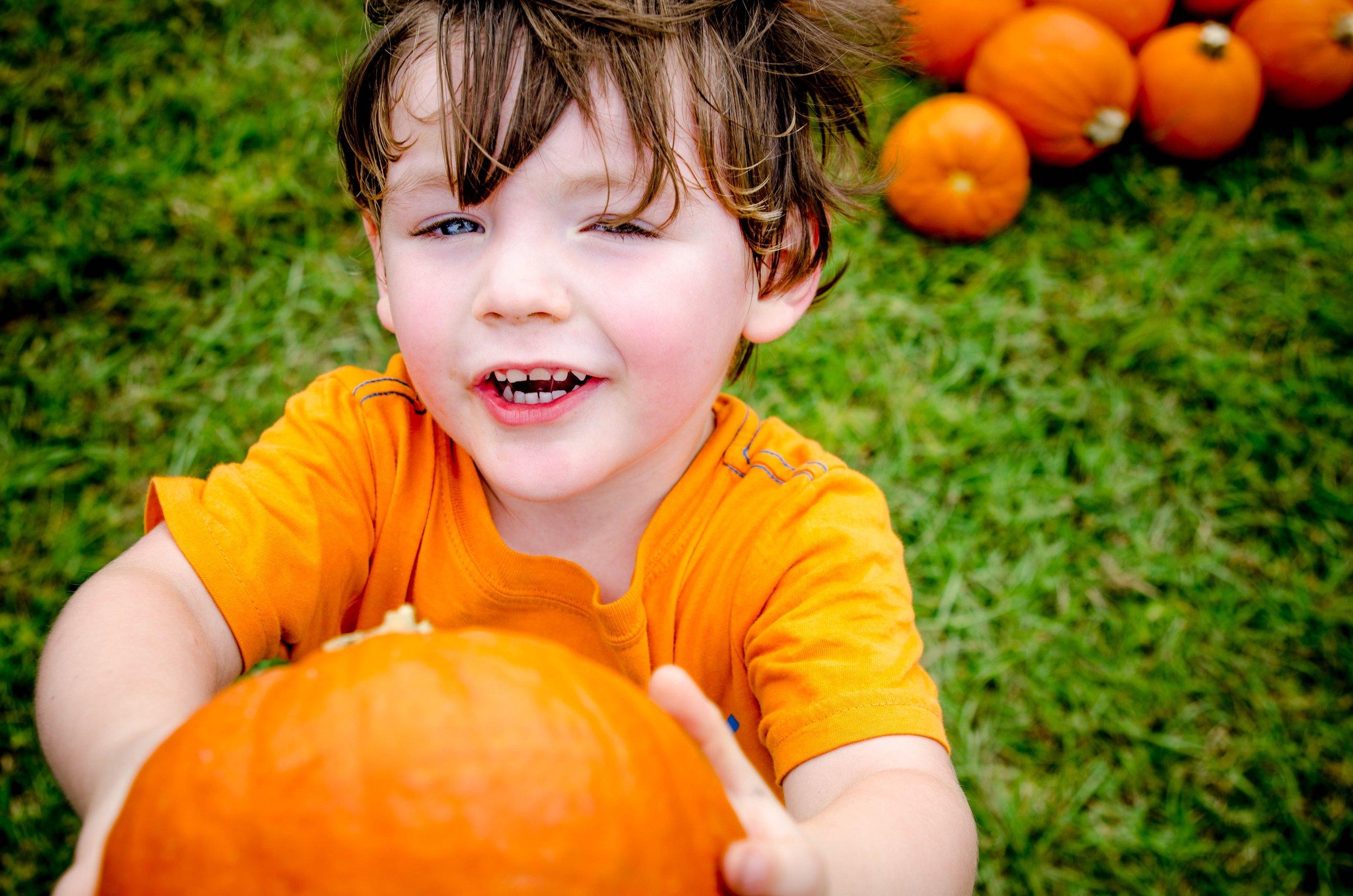 How to grow massive pumpkins!
