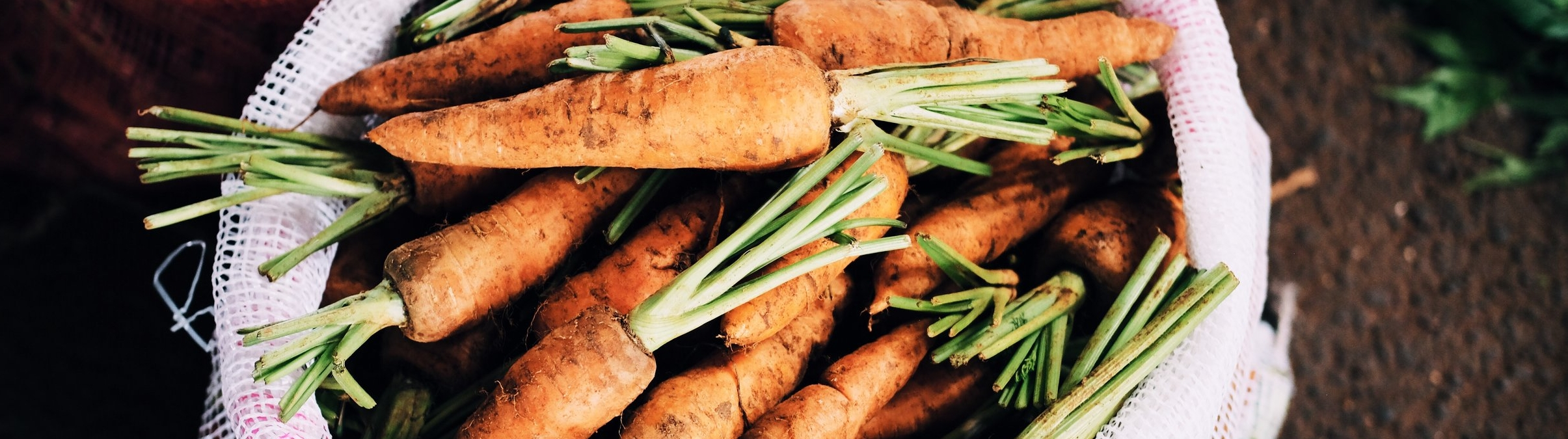 How to grow carrot tops