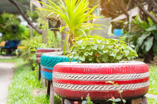 Recycled Gardening Ideas from Yates Gardening