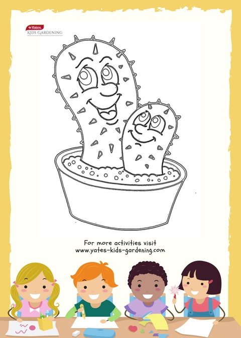 Colour in your own cactus