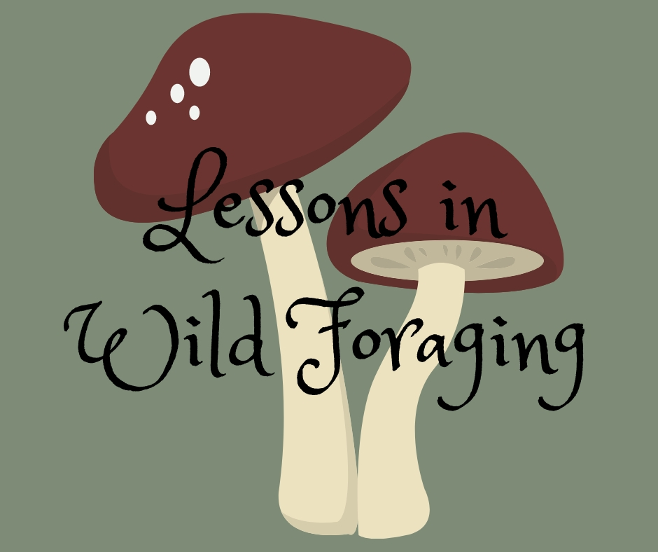 Lessons in Wild Foraging.jpg