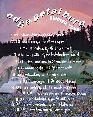 edge petal burn poster.png