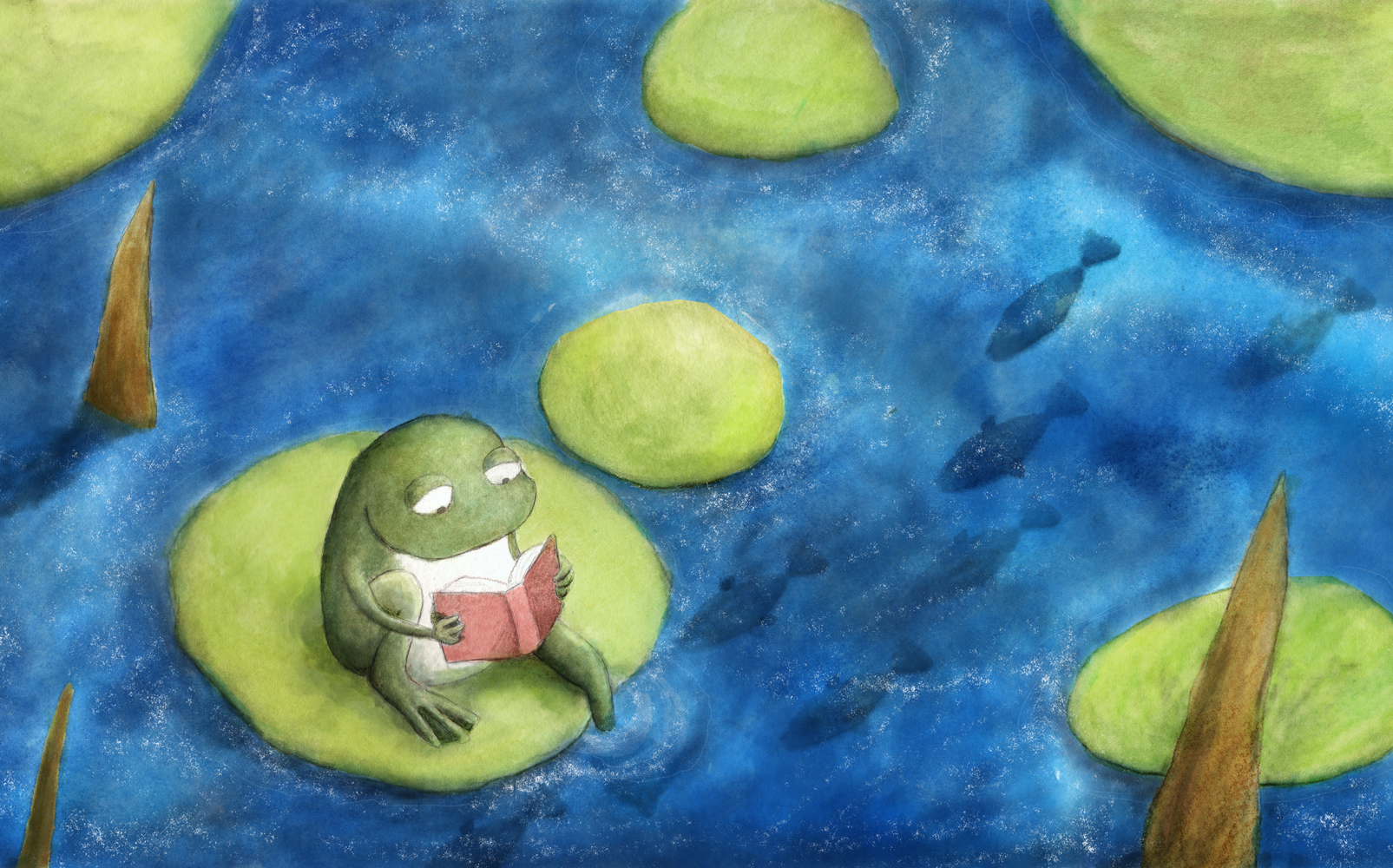 Frog_1605x1000.jpg