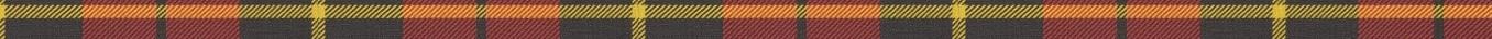 Tartan - long narrow unprocessed.jpg