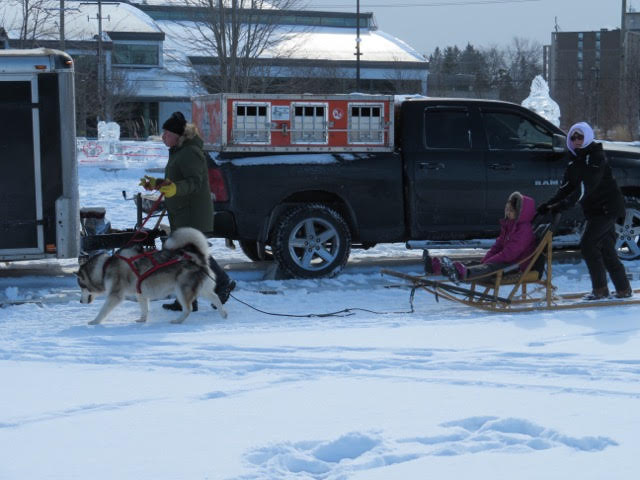 Don and Sophie heading up the sled with Kathy on the back, and an excited passenger in the middle. We had a blast at Winterloo 2019 and can't wait to see you all again in 2020!