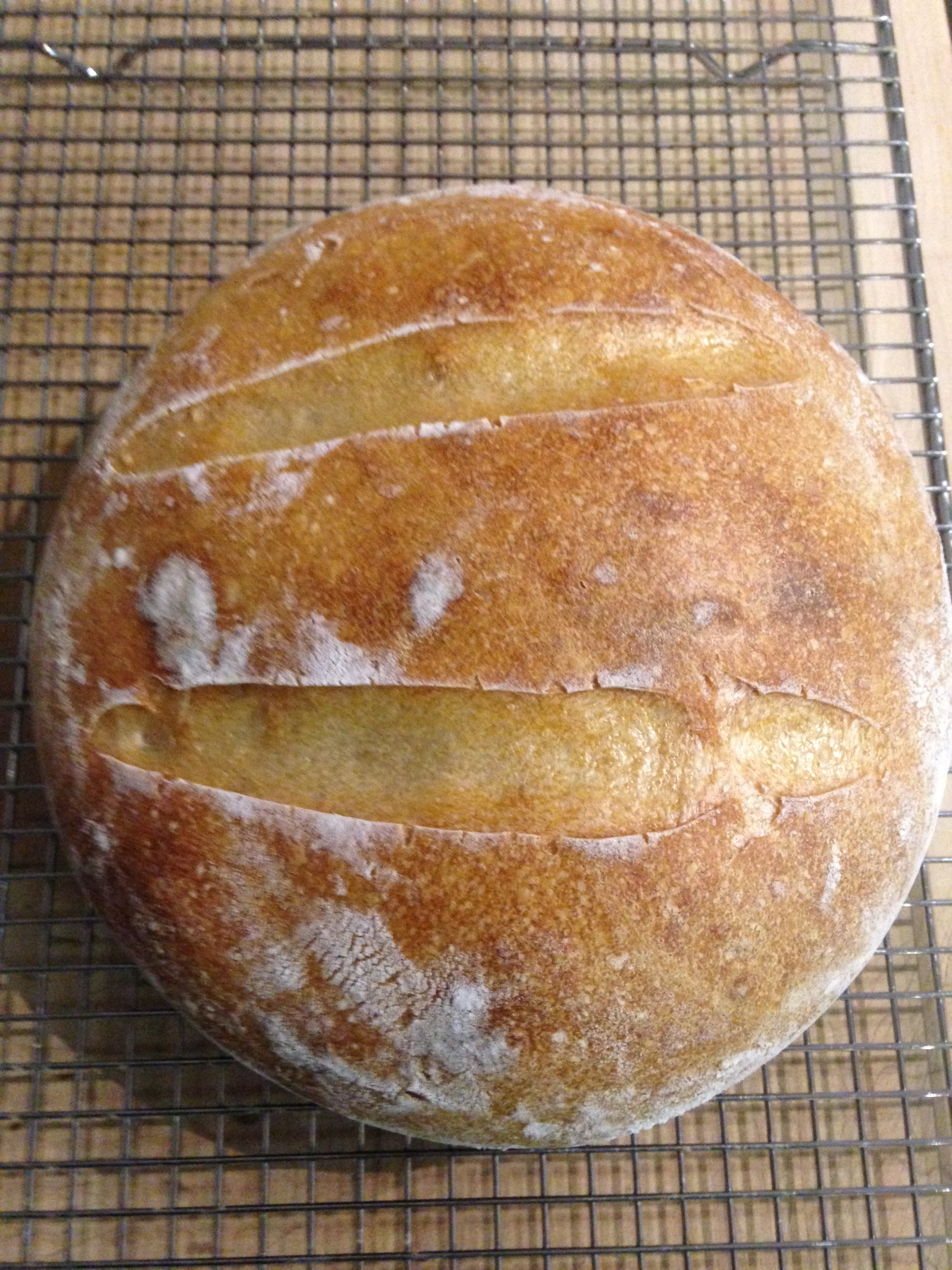 Loaf Number One. This loaf  was created using two different Youtube videos. I enjoyed using Youtube because I learn from watching rather than reading.  However the video I was watching was making bread by feel which I feel is appropriate more for people who have made sourdough before.