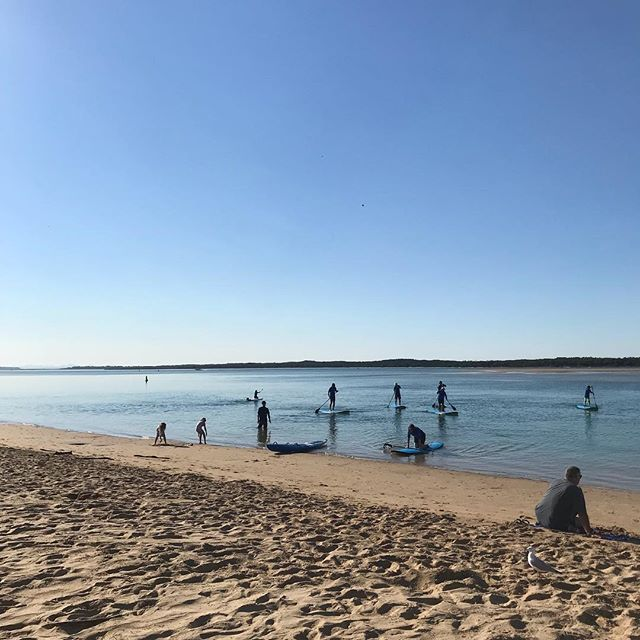 Great lesson this morning!! Got everyone up on their feet in perfect conditions, before it got too hot 🥵  #inverloch3996 #inverlochsup #gippygirlscan #standuppaddleboarding