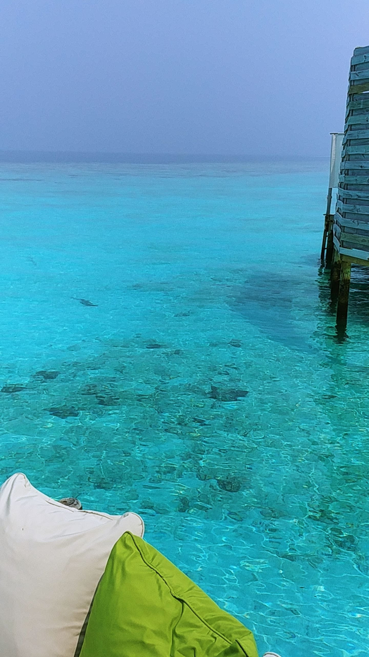 The water is so clear that you can see fishes swimming at the villa...but please do not drink it...it's salty AF