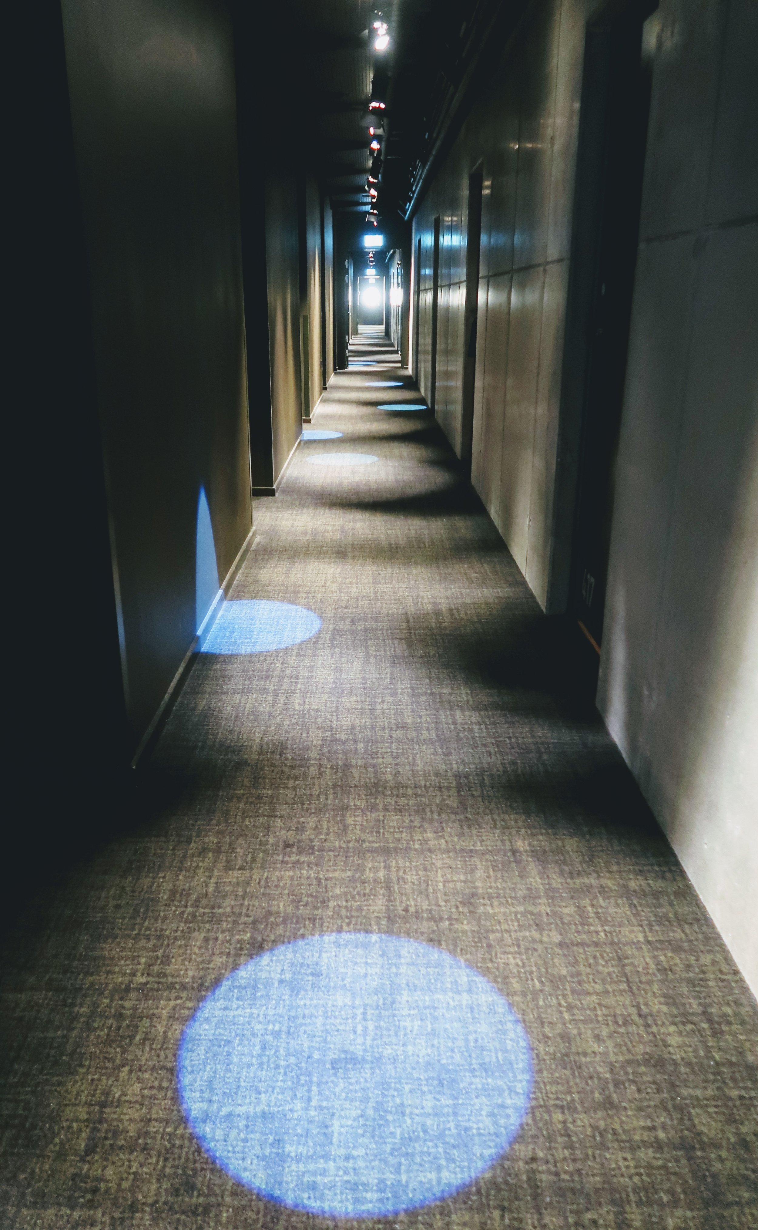 Love the funky lights set up for the guest room corridors.