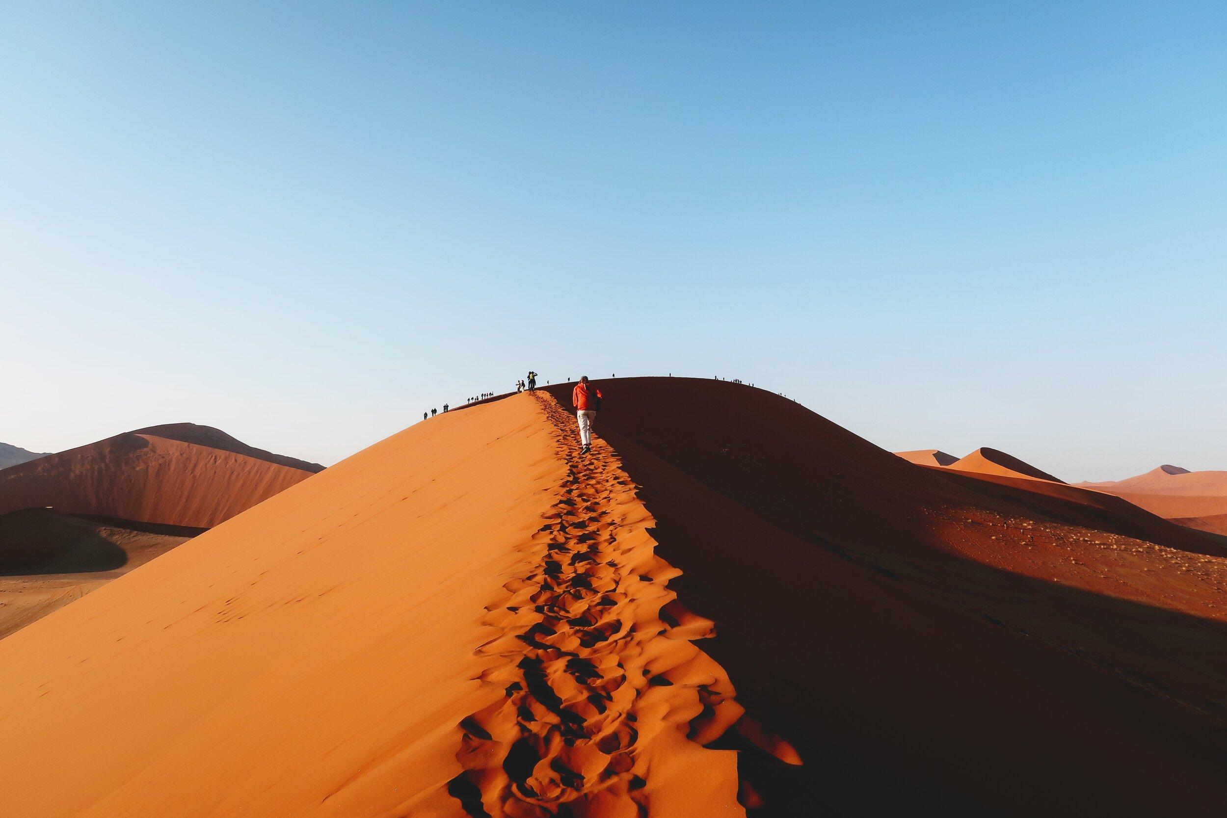 climbing-dune-45