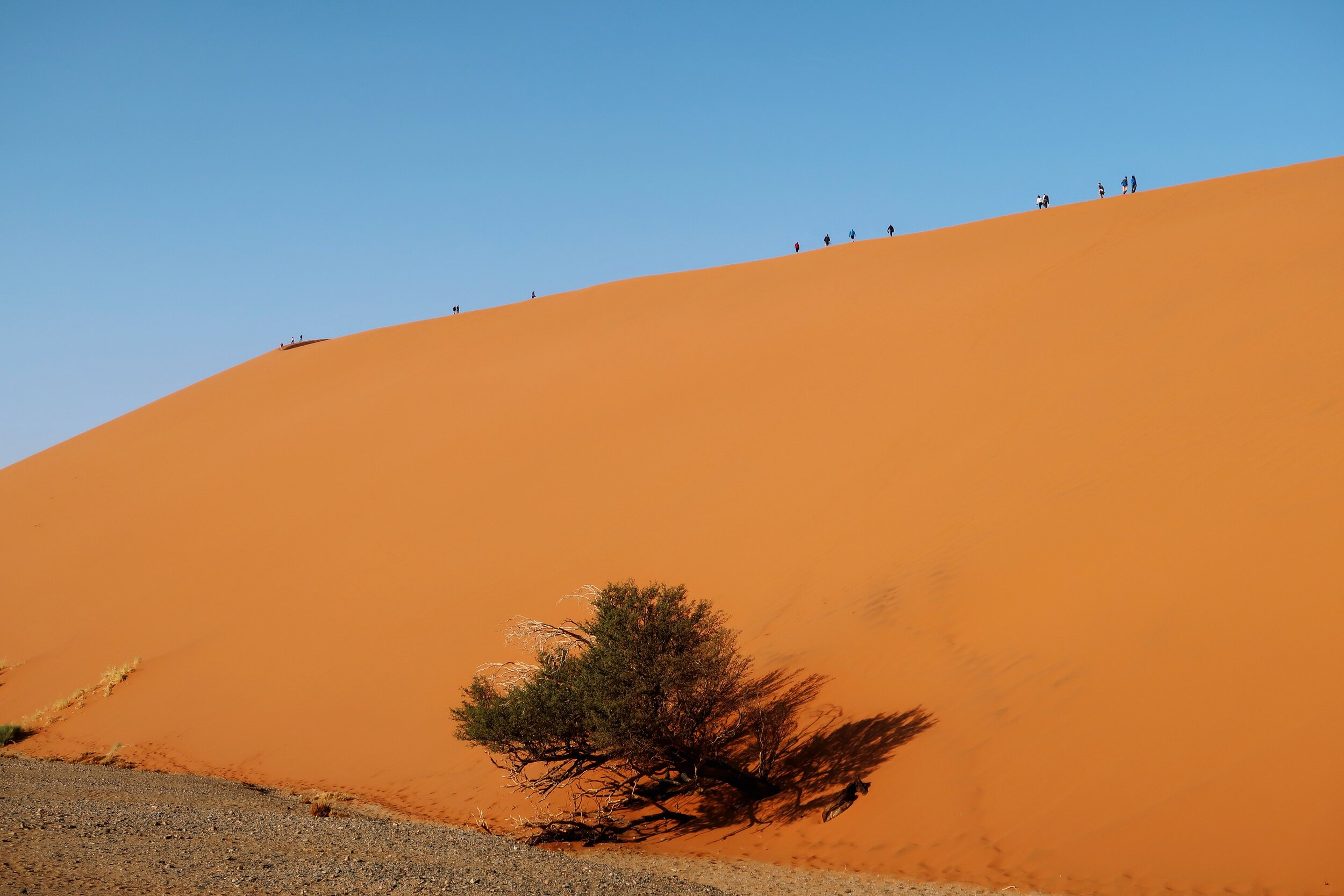 side-view-sand-dune-45-namibia