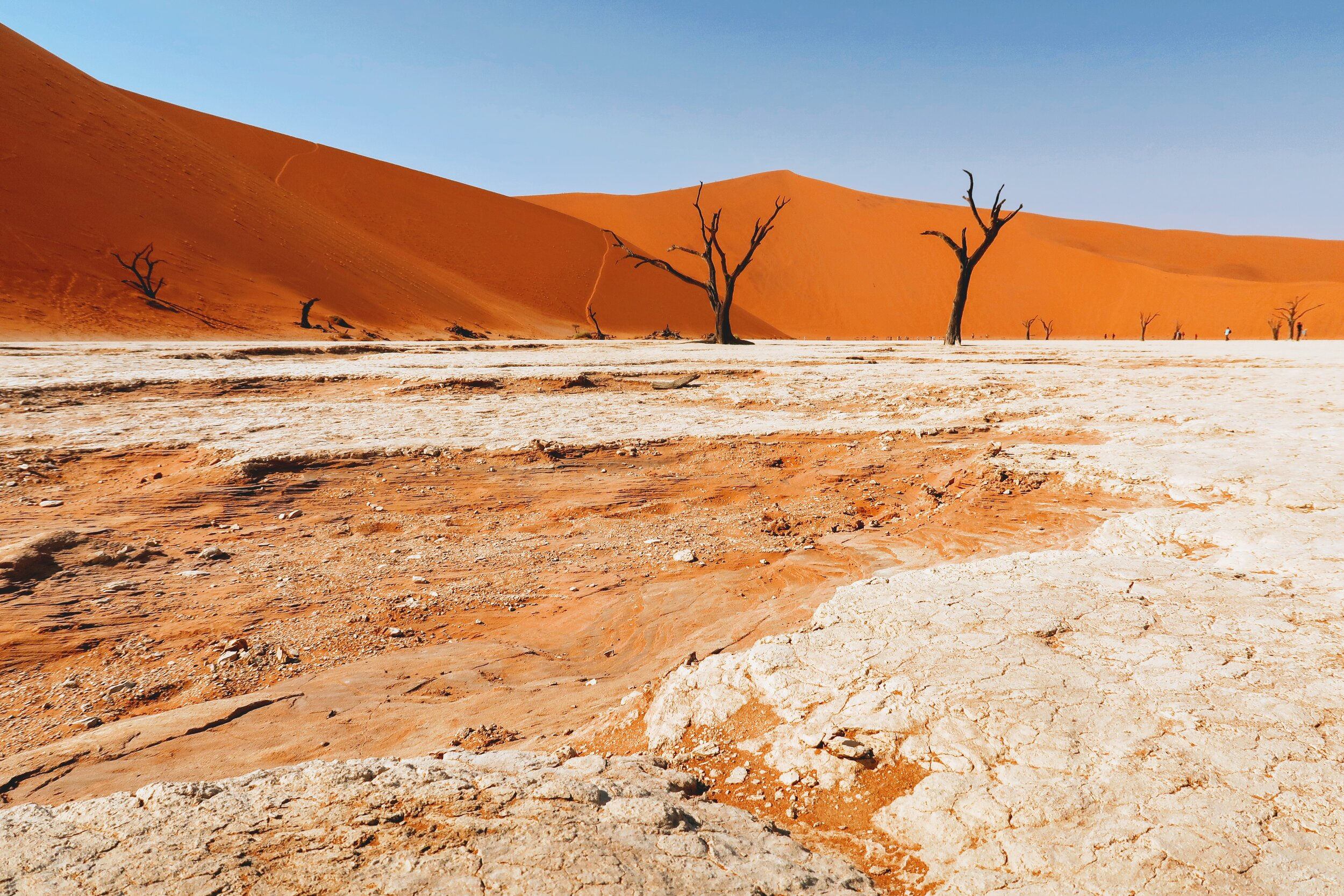 desert-adventure-namibia
