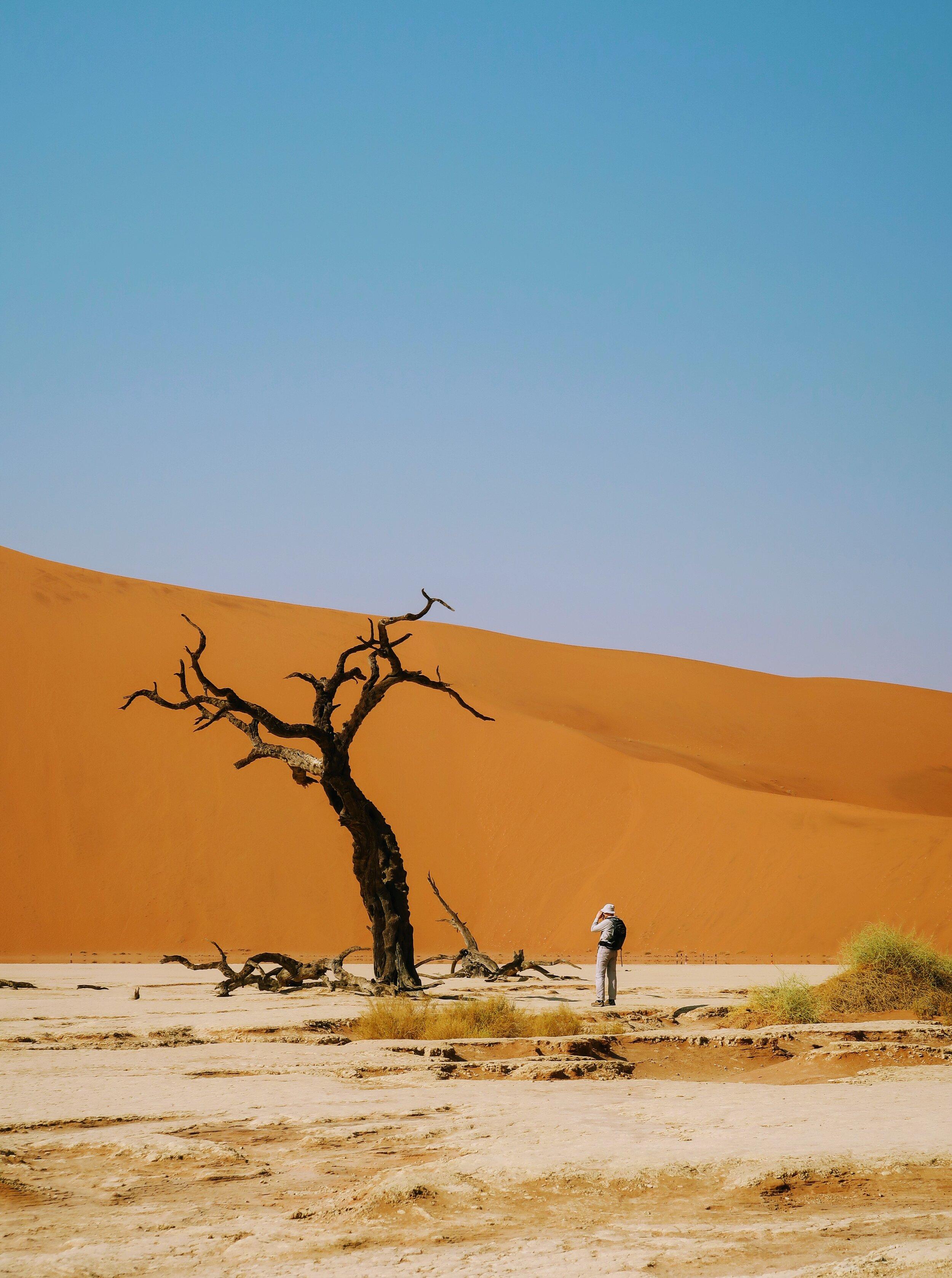 solo-travel-namibia