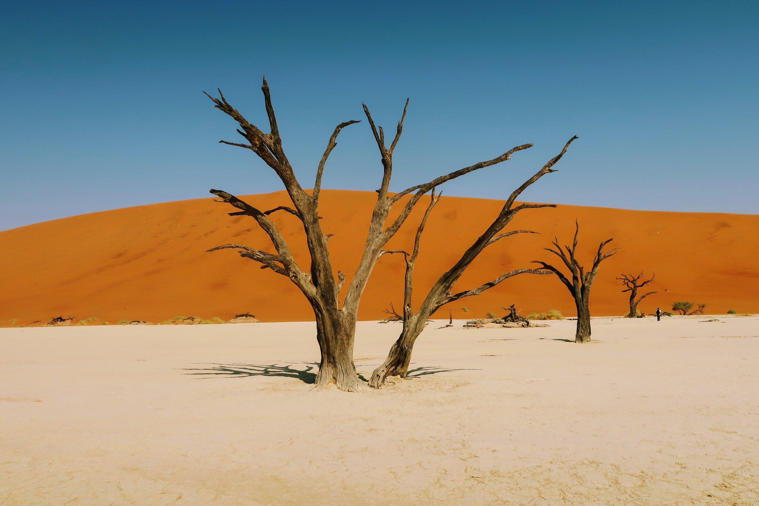 travel-inspiration-namibia