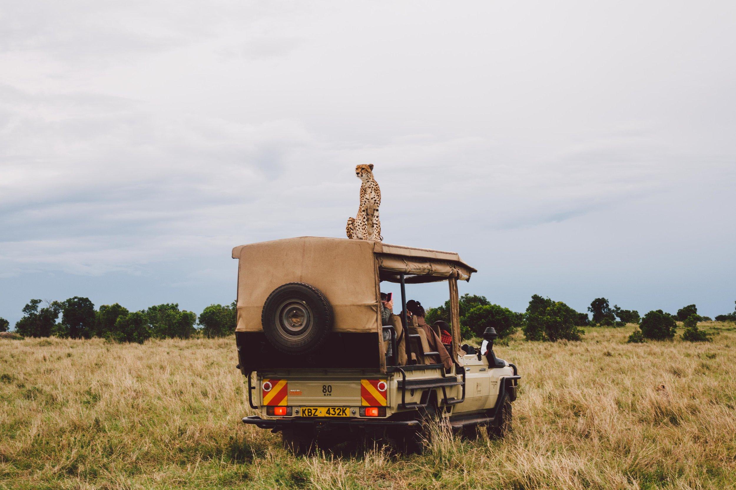 Copy of Samburu National Reserve