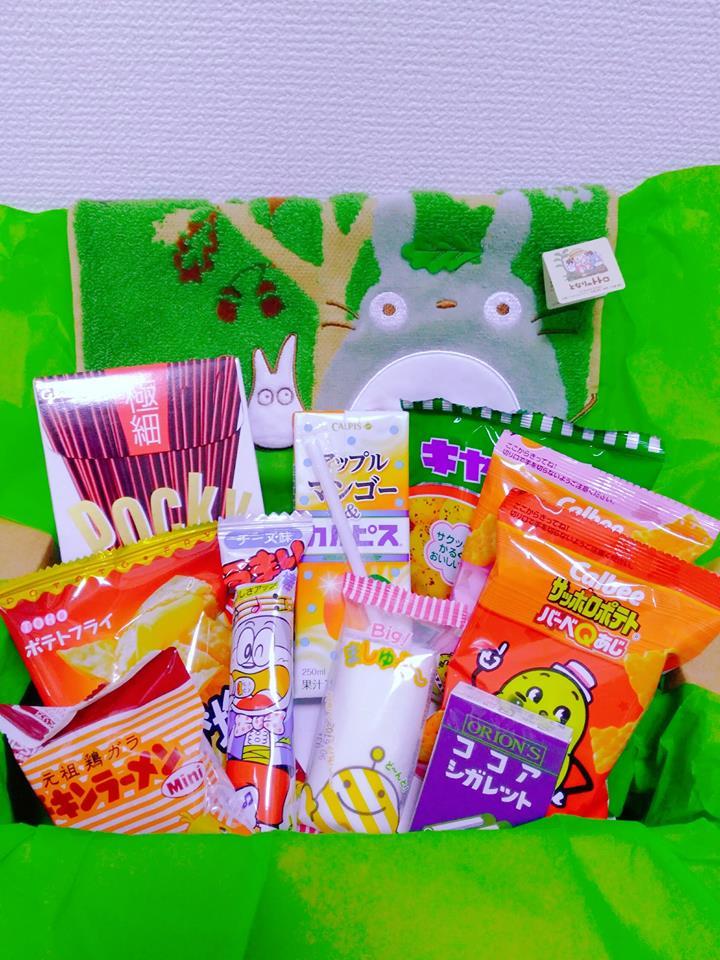 Toalla Totoro.jpg