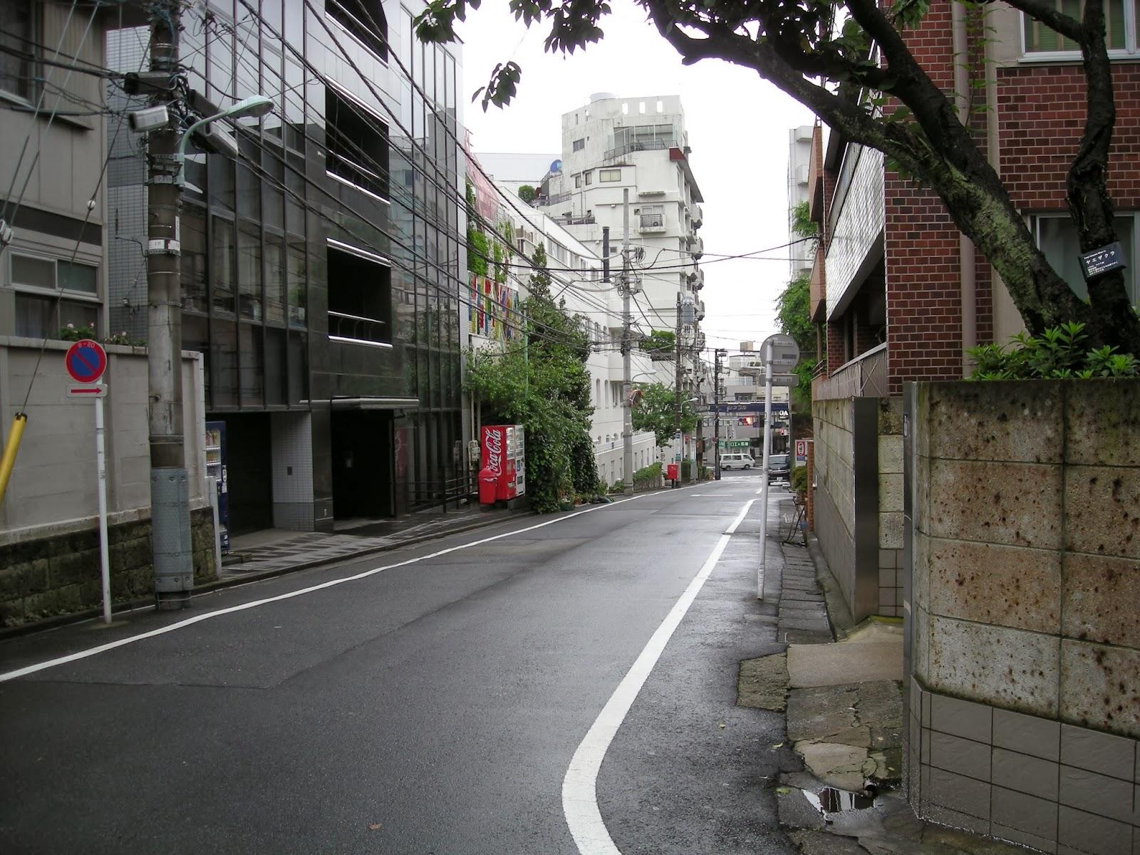 calles en Japon.JPG