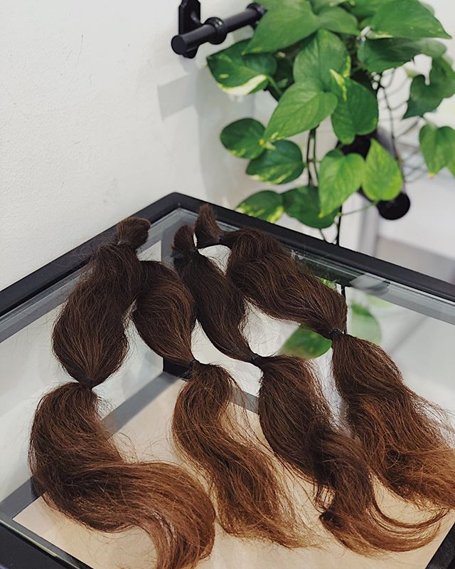 Make a difference today and give someone a reason to smile by donating your hair to a precious cause. Because we believe that hair is a powerful way to restore confidence and hope, we at Devonshire Hair Studio sincerely wish that you can join us in our journey in supporting this cause. . . Contact us today at 6334 7898 to find out more on how you can get involved✨ . . #hairdonation #japanesesalon #devonshireselectedbeautysalons