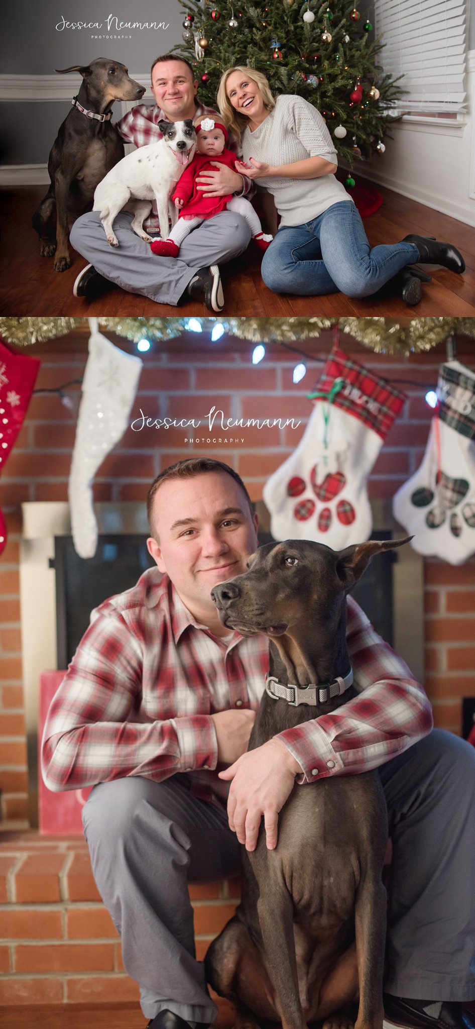 Christmas family photo with dogs.jpg