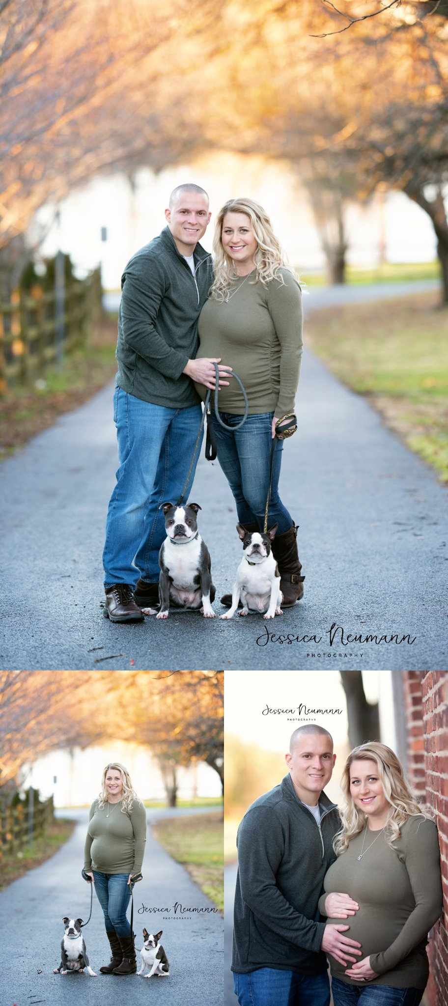 Maternity photos of couple with dogs in New Market, MD
