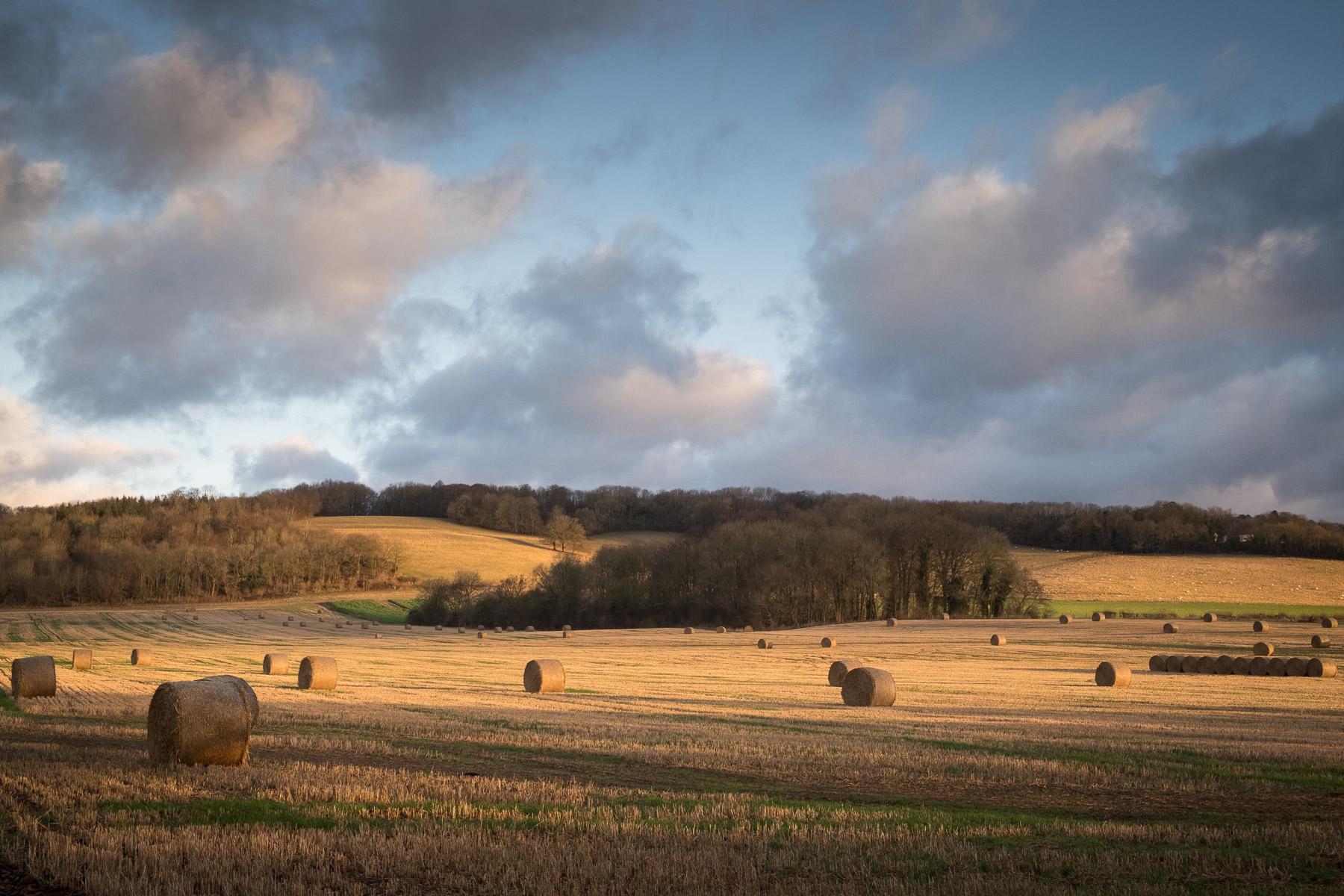 Landscape #chevening #sevenoaks #northdowns