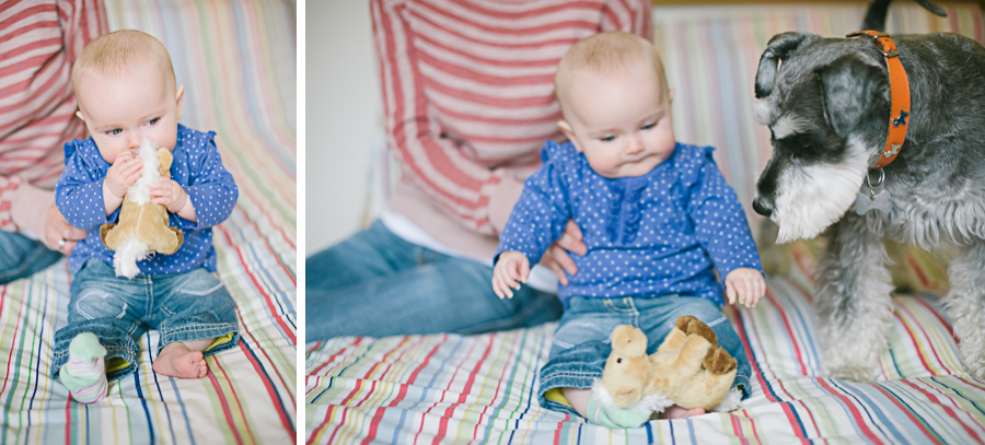 Pet & Baby Photographer-12