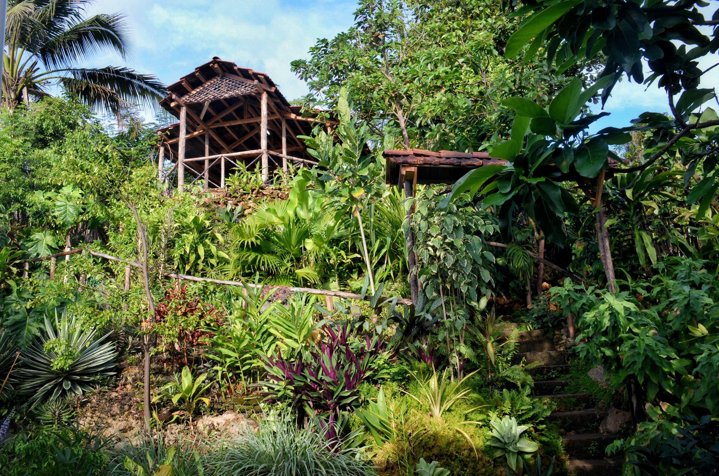 Villa Paradiso Garden, Baracoa, Cuba
