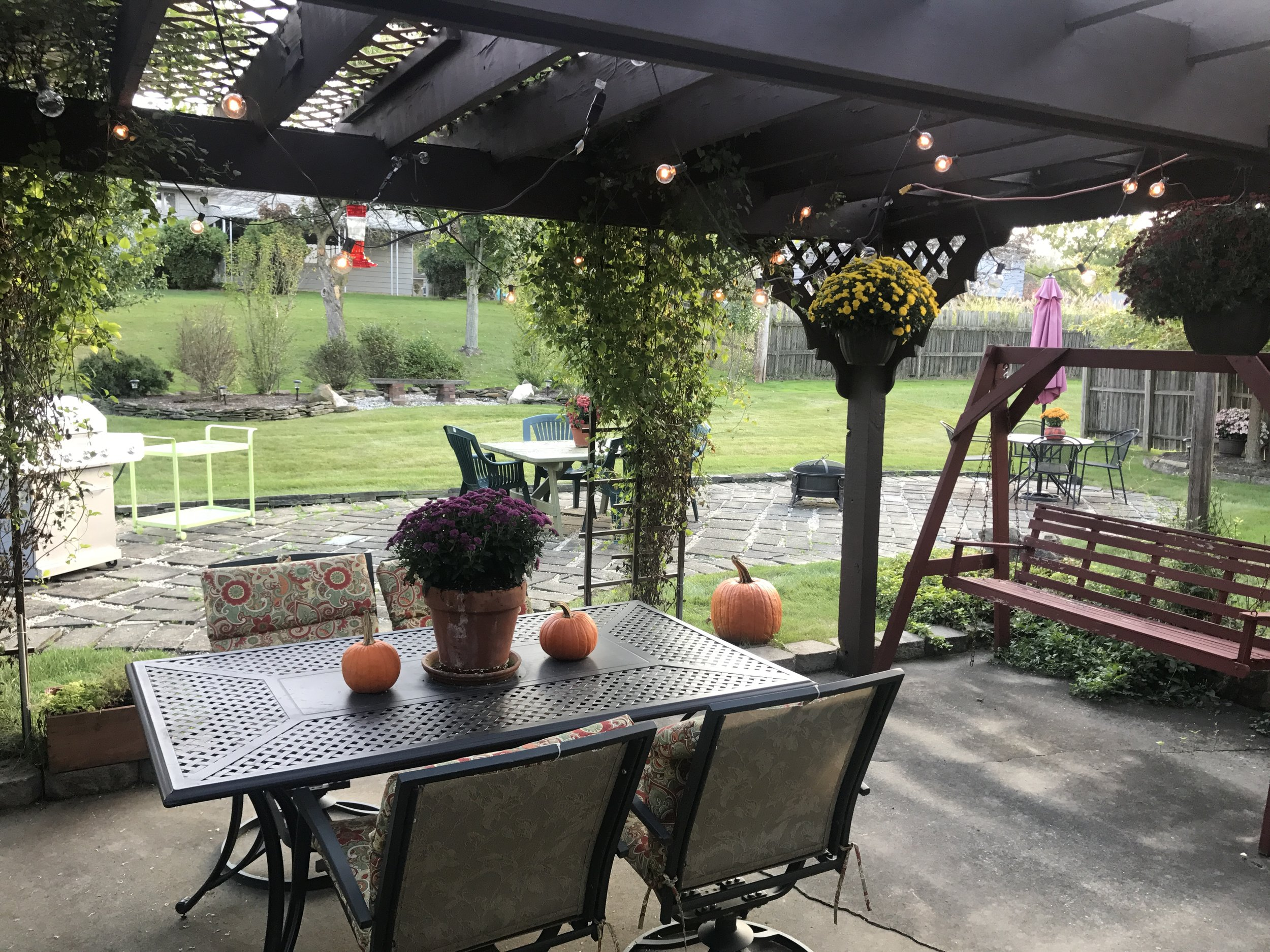 My pergola in Fall