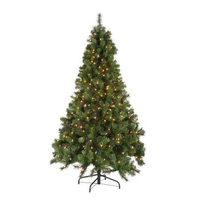home-accents-holiday-pre-lit-christmas-trees-w14l0467-64_400_compressed.jpg