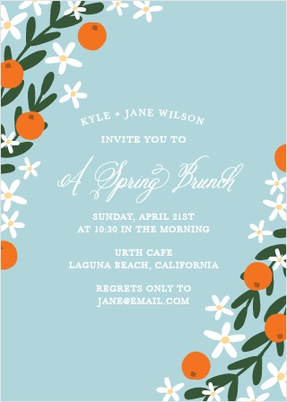 springtime-luncheon-party-invitations-l.jpg