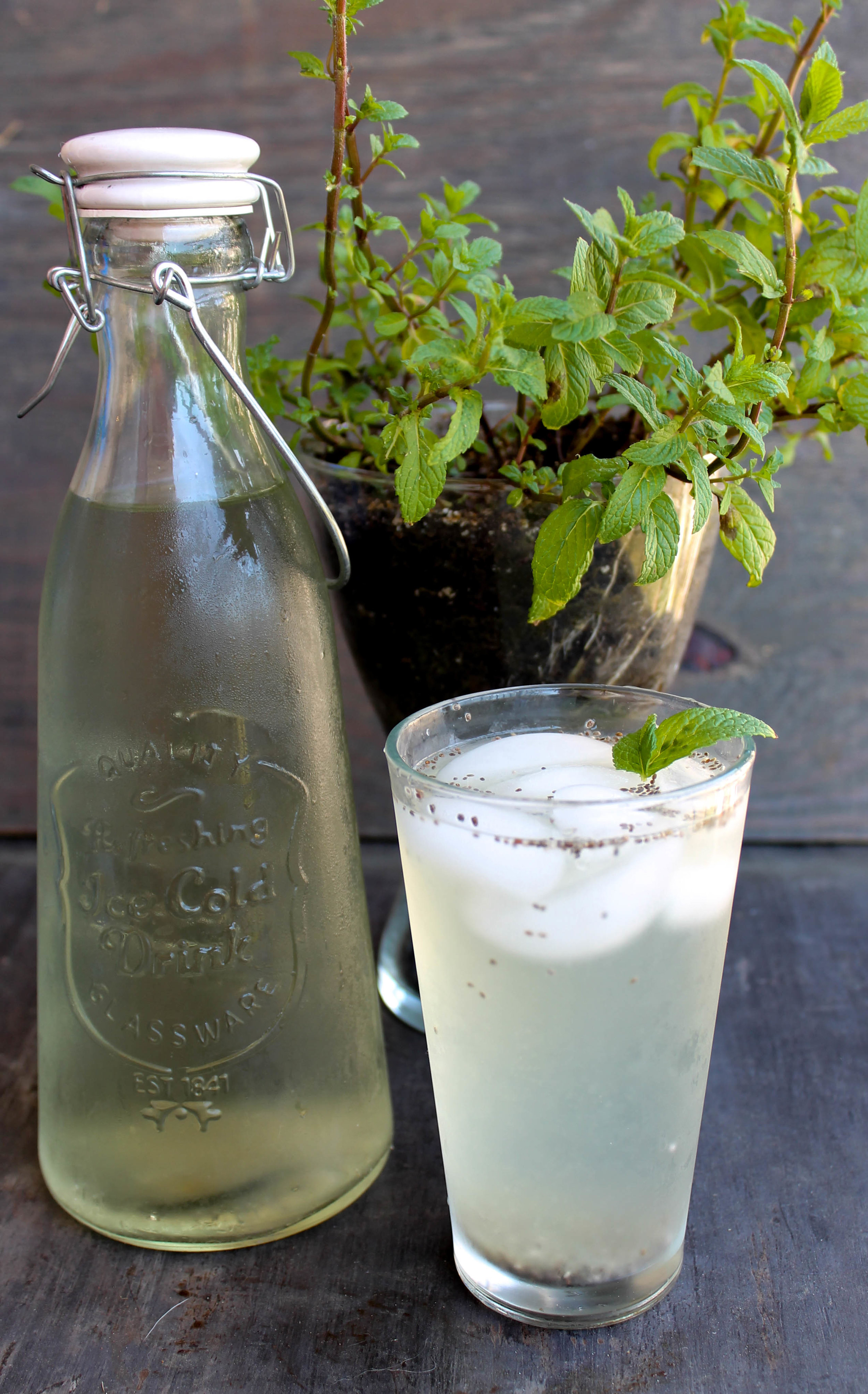 Cucumber Mint Chia Fresca is an easy and flavorful beverage that keeps you hydrated through Summer months and possibly help you with your soda/caffeine addiction!
