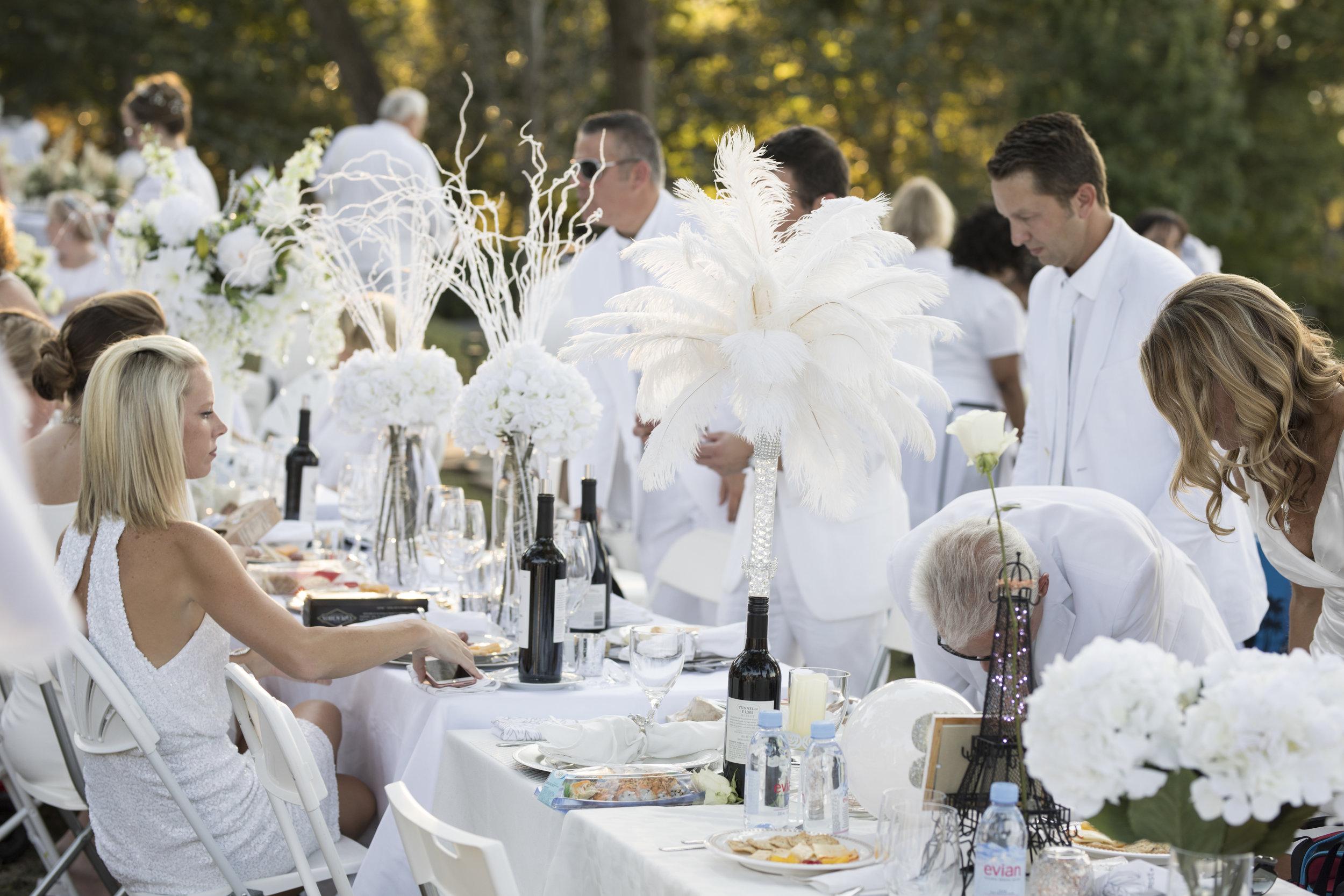 Beginners Guide to Diner en Blanc